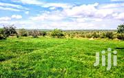 Land 200 Acres In Zirobwe-kikyusa | Land & Plots For Sale for sale in Central Region, Kampala
