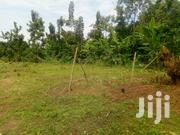 Plots For Sale In Gayaza Busukuma At Only 5millions Smaller Sizes | Land & Plots For Sale for sale in Central Region, Wakiso