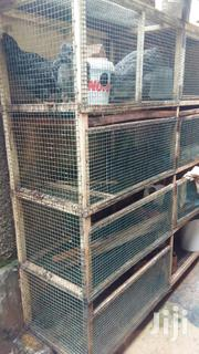 Modern Cage | Farm Machinery & Equipment for sale in Central Region, Kampala