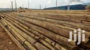 Eucalyptus Poles | Building Materials for sale in Central Region, Kampala