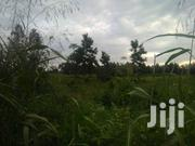 Land for Sale in Luweero | Land & Plots For Sale for sale in Central Region, Luweero