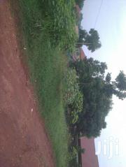 Land In Kira 20decimals | Land & Plots For Sale for sale in Western Region, Kisoro