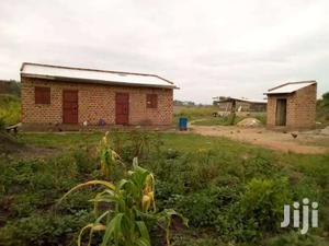 10 Acres Of Built Farmland Up For Sale In Zirobwe