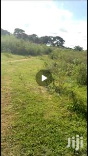 Plot of 50 Decimal Touching Lake Victoria. Asking Price 160M   Land & Plots For Sale for sale in Central Region, Wakiso