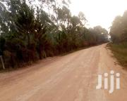 MASAKA ROAD KAYABWE: 151 Close to the Equator | Land & Plots For Sale for sale in Central Region, Mpigi