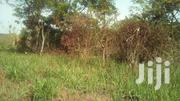 Land For Farming With A Good Access | Land & Plots For Sale for sale in Central Region, Luweero