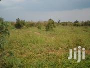Luweero Acres for Sale | Land & Plots For Sale for sale in Central Region, Kampala