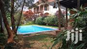 Modern 4 Bedroom House With a Swimming Pool in Naguru | Houses & Apartments For Rent for sale in Central Region, Kampala