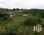 Plot for Sale in Bombo | Land & Plots For Sale for sale in Central Region, Kampala