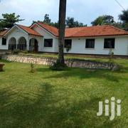 Mbuya-Kampala House for Rent U.S.$ 2500 4 Bedrooms | Houses & Apartments For Rent for sale in Central Region, Kampala