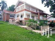 Muyenga Hill - Kampala House for Rent U.S$ 2500 Per Month | Houses & Apartments For Rent for sale in Central Region, Kampala