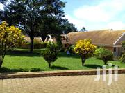 5bedroom House for Rent 2500$ Naguru | Houses & Apartments For Rent for sale in Central Region, Kampala