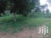 Very Hot Half an Acre on Quick Sale in Heart of Kansanga Kiwafu Estate | Land & Plots For Sale for sale in Central Region, Kampala