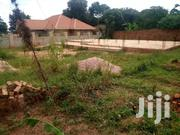 HOT DEAL 75 X 100 PLOT OF LAND ON SALE IN HOIMA TOWN | Land & Plots For Sale for sale in Central Region, Kampala