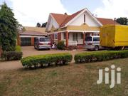 House for Rent in Bugoloobi | Houses & Apartments For Rent for sale in Central Region, Kampala