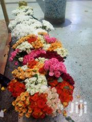 Flower Sales And Supplies | Garden for sale in Central Region, Kampala