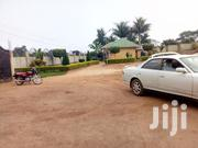 Very Hot Full Acre on Forced Sale in Heart of Busabaala With Lake View | Land & Plots For Sale for sale in Central Region, Kampala