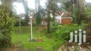 4bedrooms House For Rent In Naguru At $2500 | Houses & Apartments For Rent for sale in Western Region, Kisoro