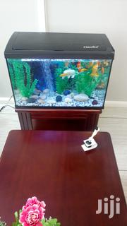 Aquariums and Fish | Pet's Accessories for sale in Central Region, Kampala