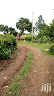 4plots Of 50fts By 100fts At Bukaya Njeru Municipality At Ugx12m Each | Land & Plots For Sale for sale in Eastern Region, Jinja