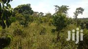 4acres Of Land In Nakifuma With Ready Title Each At 13m | Land & Plots For Sale for sale in Central Region, Mukono