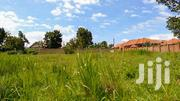 Rental Plots On Sale | Land & Plots for Rent for sale in Central Region, Mukono
