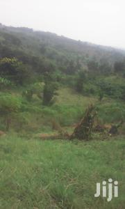 10 Acres in Mubende Connecting to Tarmac | Land & Plots For Sale for sale in Central Region, Mubende