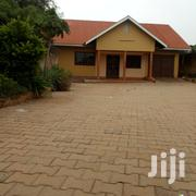 Kireka Modern Executive Three Bedroom Standalone House for Rent 750k | Houses & Apartments For Rent for sale in Central Region, Kampala