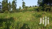 5 Acres Of Agricultural Land For Sale In Rutete, Fort Portal At 45M | Land & Plots For Sale for sale in Western Region, Kabalore