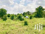 Land for Sale at Bombo   Land & Plots For Sale for sale in Central Region, Kampala