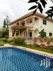 Nice House For Rent  In Naguru With A Pool $3500 | Houses & Apartments For Rent for sale in Central Region, Kampala