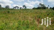 500 Titled Acres of Land in Kanoni Gomba at 2.5M Per Acre | Land & Plots For Sale for sale in Central Region, Mpigi