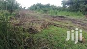 4 Acres Available for Immediate Sale in Layibi | Land & Plots For Sale for sale in Nothern Region, Gulu