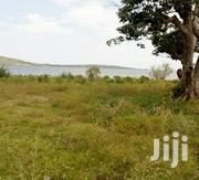 Fruitful 15acres of Land in Mukono Along Katosi Road Touching the Lake | Land & Plots For Sale for sale in Central Region, Kampala