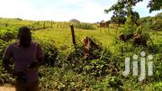 2 Acres Of Land For Sale | Land & Plots For Sale for sale in Central Region, Wakiso