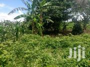 300 Acres For Sale In Nakaseke Each At 3m | Land & Plots For Sale for sale in Central Region, Luweero
