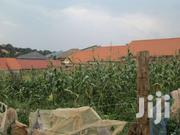 50x50ft Land With Its Tittle At 18m In Kirinya, Along Bukasa Road | Land & Plots For Sale for sale in Central Region, Kampala