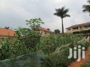 50x100 With Its Tittle At 55m  In Kirinya, Along Kinawataka  Road | Land & Plots For Sale for sale in Central Region, Kampala