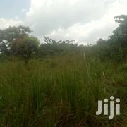 20acres Of Land For Sale In Zirobwe Kikyusa At 4m Per Acre | Land & Plots For Sale for sale in Central Region, Kampala