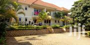 16 Bedrooms Of Apartment To Rent In Mutungo | Houses & Apartments For Rent for sale in Central Region, Kampala