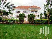 4 Bedrooms Mansion At Kansanga Muyenga | Houses & Apartments For Rent for sale in Central Region, Kampala