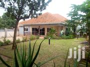 Ntinda-Kiwatule Rd Four Bedrooms Standalone House for Rent | Houses & Apartments For Rent for sale in Central Region, Kampala