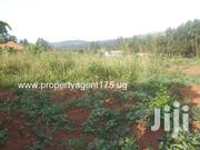 Plot on Sale!! Kitende Kaga (Entebbe Road) 100x100ft 40m | Land & Plots For Sale for sale in Central Region, Kampala