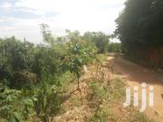 Very Jot Five Acres on Quick Sale in Buziga at Only 750m Shs Lake View   Land & Plots For Sale for sale in Central Region, Kampala