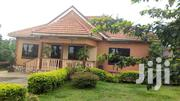 Kiwatule 3bedroom Standalone For Rent | Houses & Apartments For Rent for sale in Central Region, Kampala