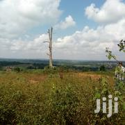 2 Acres And 30 Decimal Acres Of Land For Sale Kira Nakasaja | Land & Plots For Sale for sale in Central Region, Kampala