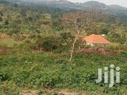 1 Acre Buyege | Land & Plots For Sale for sale in Central Region, Wakiso