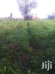 10 Acres of Farmland on One Mailo Title in Wobulenzi Bamunanika | Land & Plots For Sale for sale in Central Region, Wakiso