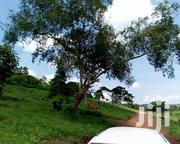 Good Plots Available | Land & Plots For Sale for sale in Central Region, Kampala