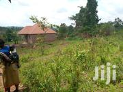Nakasajja Gayaza Road Plot For Sale Saize 60ftby 50ft | Land & Plots For Sale for sale in Central Region, Kampala